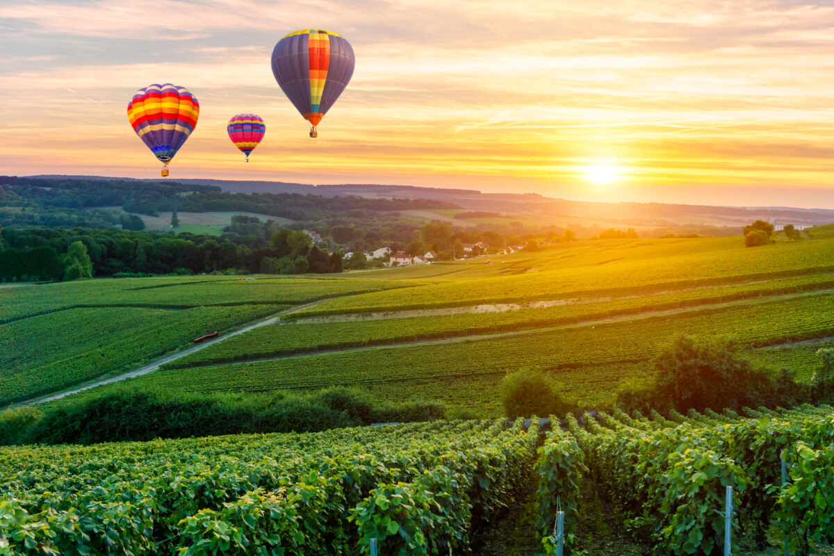 Colorful hot air balloons flying over champagne Vineyards at sunset montagne de Reims, France