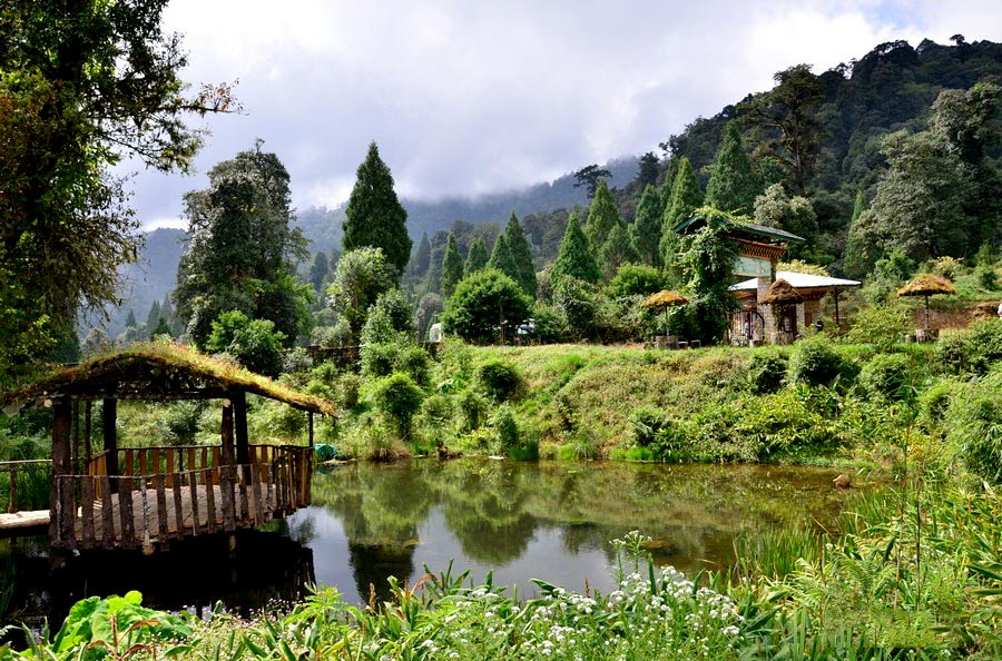 Bhutan travel for post Covid wellness with Nature