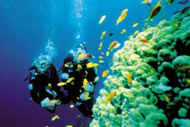 Tourist Attractions Of Maldives - Banana Reef