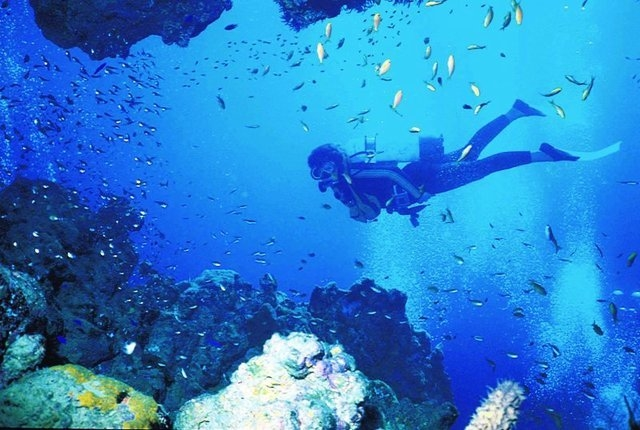 Tourist Attractions Of Maldives - Bluetribe Diving