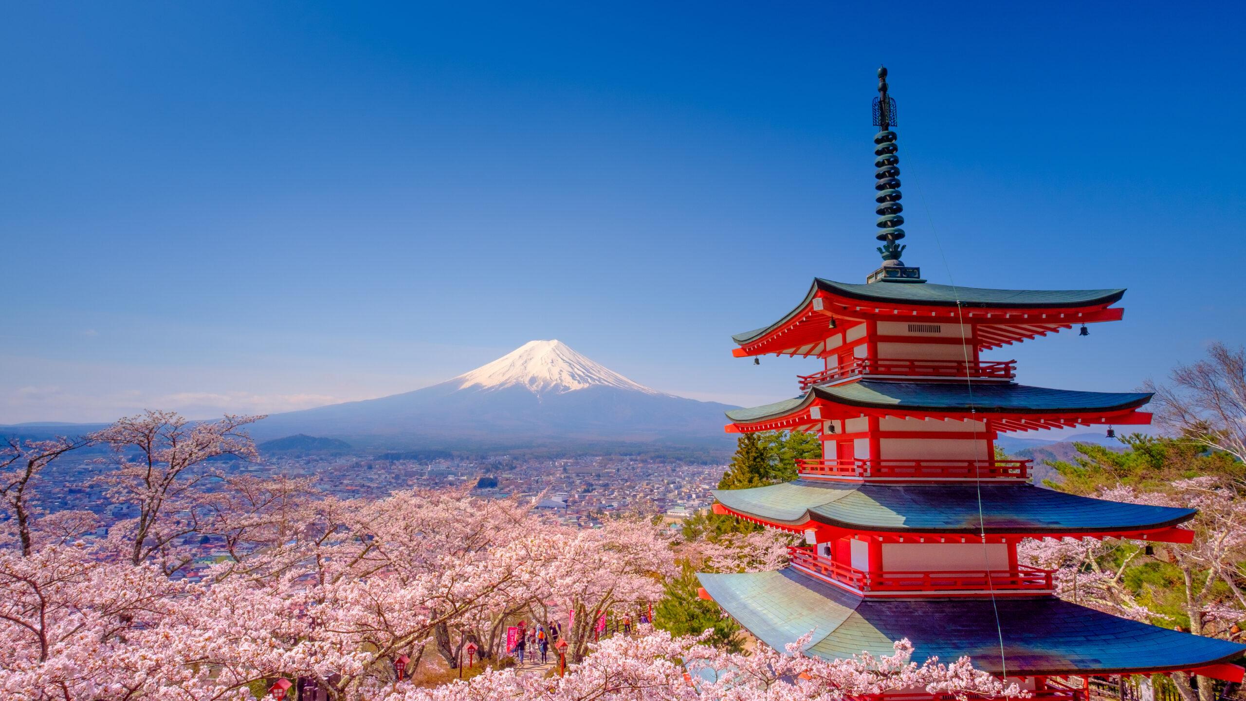 Japan beautiful landscape Mountain Fuji and Chureito red pagoda with cherry blossom Sakura.